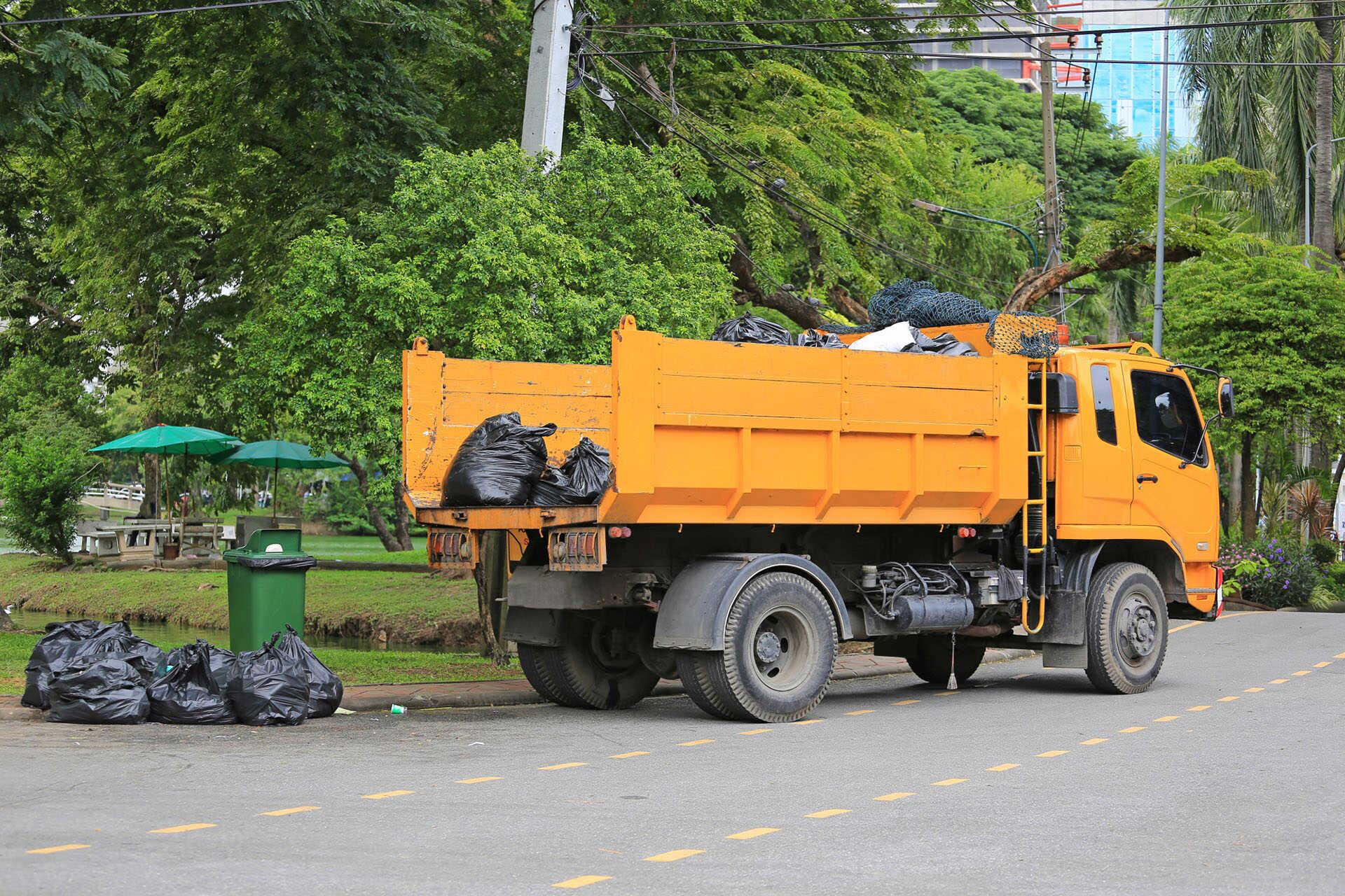 Müllentsorgung in der nähe
